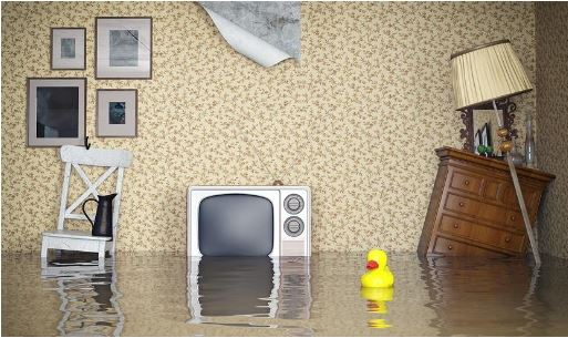 What to Do When Your Home Floods