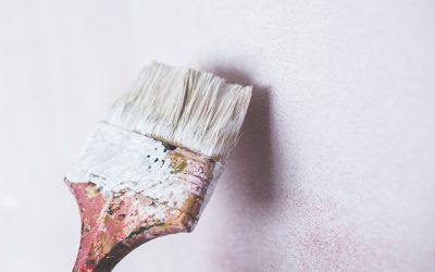 Considering painting over mold? Read this first.