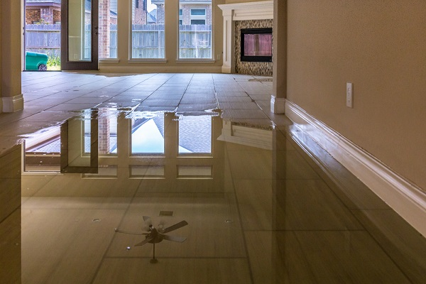 What to Expect in the Water Damage Cleanup Process?