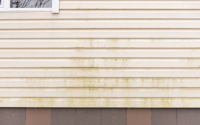 6 Signs You Need to Replace Your Siding to Avoid Water Damage