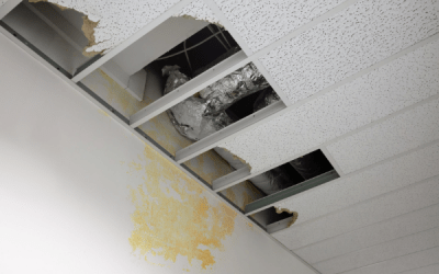 Common Causes of Commercial Water Damage